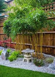 Use Of Bamboo In Landscaping Greenmylife