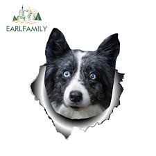 Earlfamily 13cm X 11 1cm 3d Border Collie Car Sticker Torn Metal Dog Car Decal Reflective Stickers Waterproof Bumper Accessories Car Stickers Aliexpress