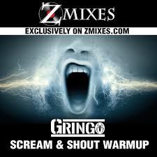 Scream and Shout Warmup – Zmixes