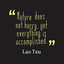lao tzu quote about nature