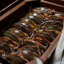 Soft-Shell Crabs Are Back on the Menu ...