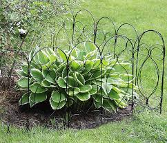 40 Best Garden Fence Ideas Design Pictures Designing Idea