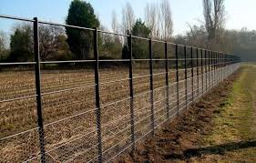 Deer Fencing Continuously Welded Mild Steel Metal Post Wire Deer Fence Fencing For Sale Plant Protection