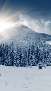 winter mounn forest wallpaper