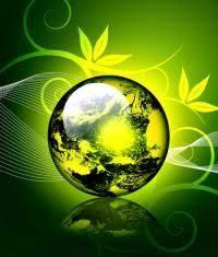 Los 10 consejos para proteger el medio ambient | Medio ambiente ...
