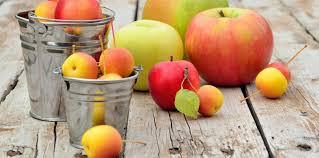 Les différentes variétés de pommes | LaNutrition.fr