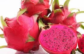 红色火龙果和白色火龙果的区别哪种营养价值更高- 京东