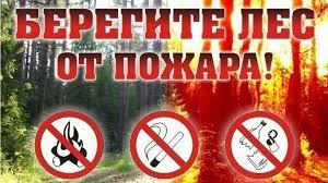 """Картинки по запросу """"пожарный сезон лес"""""""