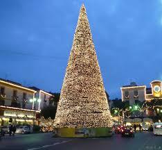 In piazza arriva l'albero di Natale di Sorrento, regalo di un imprenditore a Latina - Latina24ore.it