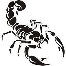 Scorpion Vinyl Decal Car Truck Sticker Car Decals Vinyl Car Stickers Vinyl Decals
