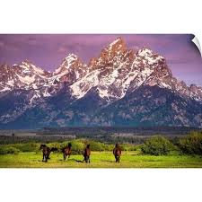 Grand Teton National Park Wyoming Mountains Printed Sticker Decal Hiking Camping