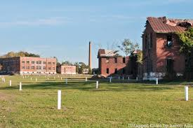 Behind the Scenes Photos on Hart Island, NYC's Mass Burial Ground ...