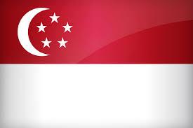 the national singaporean flag