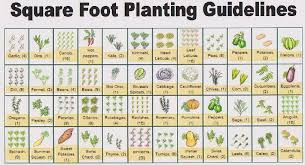 square foot planting guide garden
