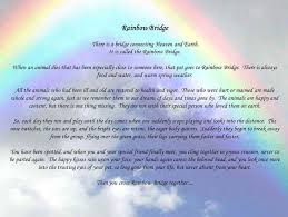 quote rainbow bridge dog quote