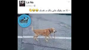 اقوي البوستات عن المذاكرة لعلي ربيع ومحمد هنيدي تابع واضحك احلي