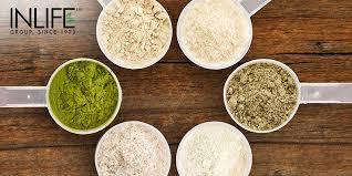 whey protein isolate powder recipes
