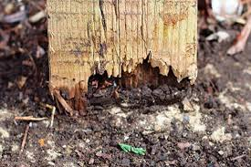 Fence Post Repair Quick Easy Affordable Post Buddy Uk Fence Post Repair Fence Post Wood Fence Design