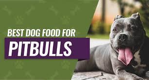 best dog food for pitbulls 8 picks for