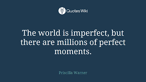 the world is imperfect but there are millions