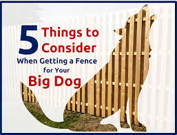 fence for your big dog