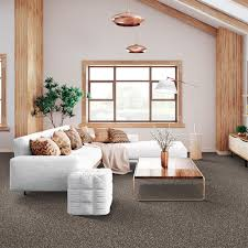 Lifeproof With Petproof Technology Maisie I Color Celtic Mist Texture 12 Ft Carpet 0642d 29 12 The Home Depot