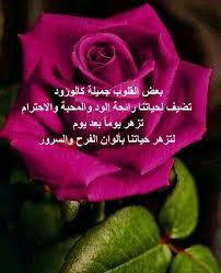 خواطر عن الورد اروع عبارات لغة الورد هل تعلم