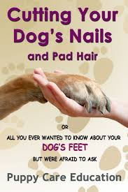nails and pad hair ebook by puppy care