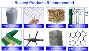 Chain Link Fencing Cyclone Wire Fence Philippines 6 Foot Chain Link Fence Buy Cyclone Wire Fence Price Philippine Lowes Chain Link Fences Prices Stainless Steel Wire Hogs Fence Product On Alibaba Com