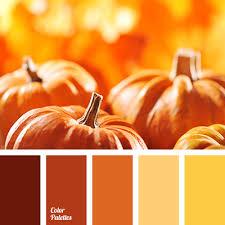 color of pumpkin color palette ideas