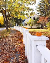 We All Need A White Picket Fence To Line Baby Pumpkins On Top Of Happy Tuesday Everyone Well Not Sure If Fall Outdoor Fall Outdoor Decor Beautiful Fall