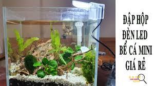 Đập Hộp Đèn Led Cho Bể Cá Thủy Sinh Mini Giá Rẻ Siêu Sáng - YouTube