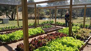 delicious gardens home page