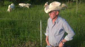 Greg Judy Describing Effective Low Cost Sheep Fence Youtube
