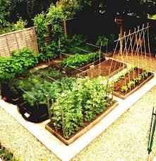 nice 10 vegetable garden ideas for