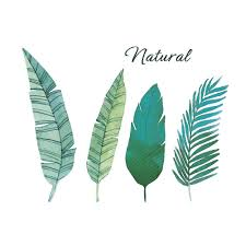 Wall Stickers Home Wall Decor Green Leaves Sticker For Kids Room Bedroom Decoration Plants Poster Mural Wallpaper Wall Decals Wall Stickers Decals Wall Stickers Deco From Topboom 1 69 Dhgate Com
