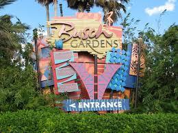 busch gardens ta parkgoer struck