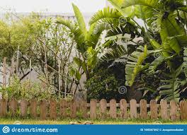 Small Wooden Fence In A Garden Stock Photo Image Of Outside Nature 169287352