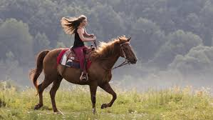best places for horseback riding in los