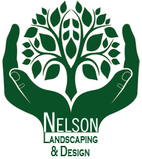 nelson landscaping and design south