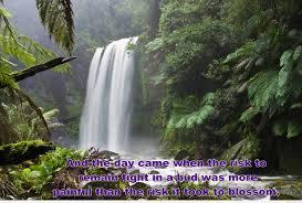 falls nature quote