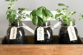 diy indoor herb garden how to make