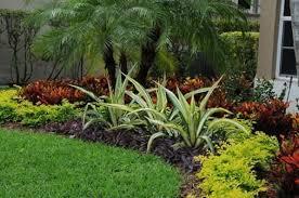 gardening in south florida