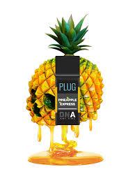 DNA | PLUG PLAY