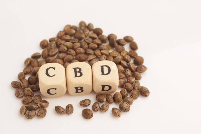 Image result for Beginners Guide To High CBD Hemp Seeds""
