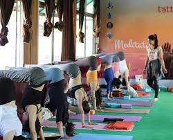 tattvaa yogashala best yoga teacher