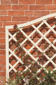 How To Attach Trellis To A Wall Or Fence Ronseal