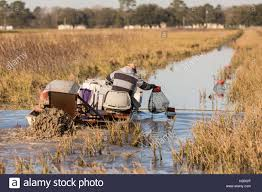 An aquaculture farmer pulls traps with crayfish also known as Stock Photo - Alamy