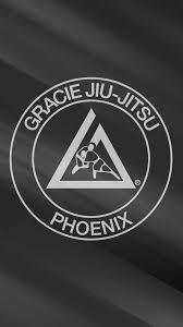 jiu jitsu wallpapers 750x1334 px