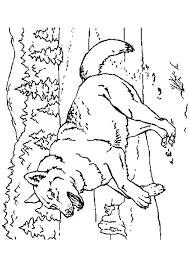 Wolf In Het Bos Kleurplaat